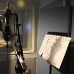 Vocals - Mid/Side